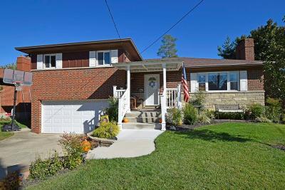 Cincinnati Single Family Home For Sale: 1093 Shangrila Drive