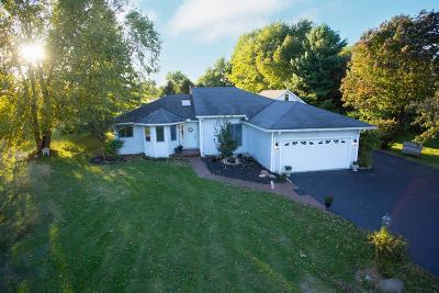 Turtle Creek Twp Single Family Home For Sale: 1101 Settlemire Road