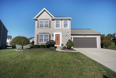 Single Family Home For Sale: 1165 Promenade Drive
