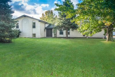 Harrison Twp Single Family Home For Sale: 7128 Salem Road