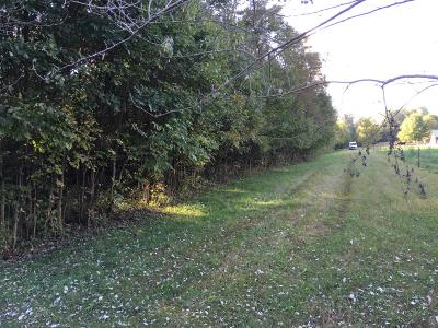 Franklin Twp, Jackson Twp, Sardinia Residential Lots & Land For Sale: 9936 John Woods Road