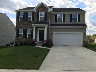 Colerain Twp Single Family Home For Sale: 8005 Valley Crossing Drive