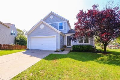 Hamilton Single Family Home For Sale: 6633 Elderberry Court