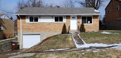 Delhi Twp Single Family Home For Sale: 5332 Romance Lane