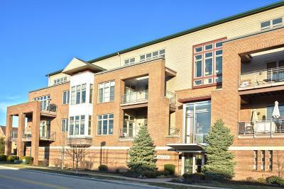 Blue Ash Condo/Townhouse For Sale: 9348 Towne Square Avenue #12
