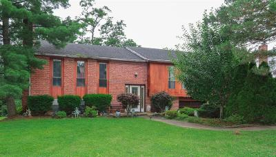 Green Twp Single Family Home For Sale: 3531 Rackacres Drive