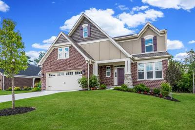 Hamilton County Single Family Home For Sale: 9992 Southport Lane