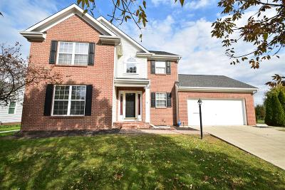 Deerfield Twp. Single Family Home For Sale: 7563 Alexandra Drive
