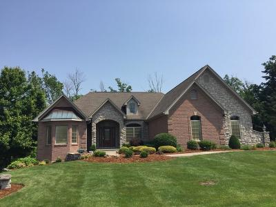 Delhi Twp Single Family Home For Sale: 1187 Lake Trail Drive