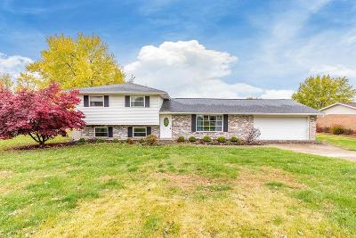 Liberty Twp Single Family Home For Sale: 6033 Snow Hill Drive