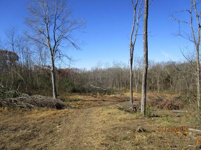 Adams County, Brown County, Clinton County, Highland County Residential Lots & Land For Sale: Lask Lane