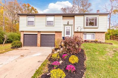 Deerfield Twp. Single Family Home For Sale: 8380 Winding Trail Place