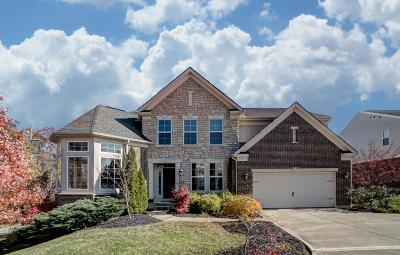 Hamilton County Single Family Home For Sale: 10224 Elmfield Drive