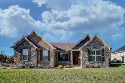 Cincinnati Single Family Home For Sale: 501 Barnside Lane