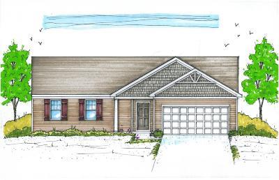 Morrow Single Family Home For Sale: 161 Sullivans Ridge Drive