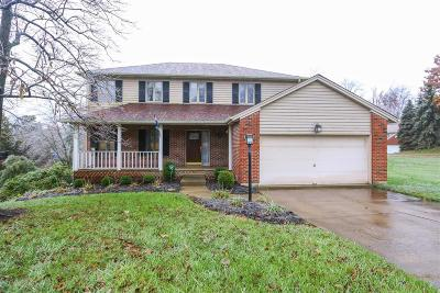 Clermont County Single Family Home For Sale: 875 Surrey Trail