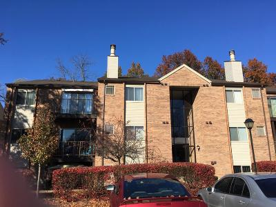 Miami Twp Condo/Townhouse For Sale: 5981 Meadow Creek Drive #9