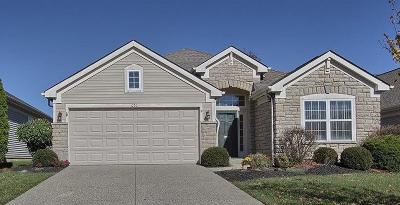 Clermont County Single Family Home For Sale: 1070 Logan Landing