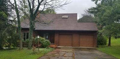 Green Twp Single Family Home For Sale: 6100 Wilmer Road