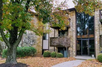 Clermont County Condo/Townhouse For Sale: 4070 Independence Drive #2I