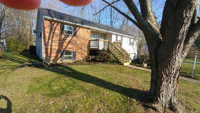 Miami Twp Single Family Home For Sale: 1346 Prayview Court
