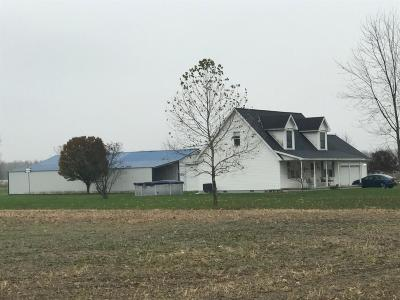 Adams County, Brown County, Clinton County, Highland County Single Family Home For Sale: 299 Sycamore Road