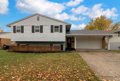 Cincinnati Single Family Home For Sale: 1481 Valdosta Drive