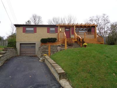 Green Twp Single Family Home For Sale: 5701 Kroegermount Drive