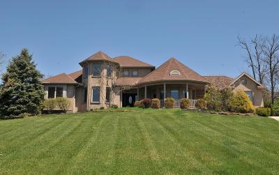 Hamilton County Single Family Home For Sale: 9965 Thoroughbred Lane
