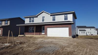 Single Family Home For Sale: 140 Lena Drive