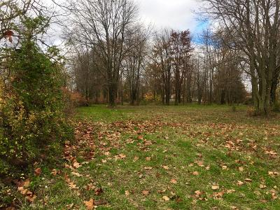 Adams County, Brown County, Clinton County, Highland County Residential Lots & Land For Sale: 9977 Fite Avenue
