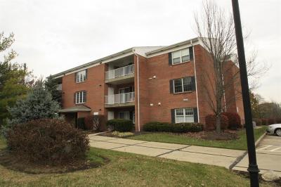 Cincinnati Condo/Townhouse For Sale: 5560 Westwood Northern Boulevard #8