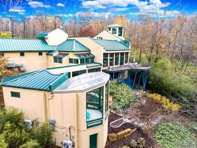 Single Family Home For Sale: 7975 Indian Hill Road
