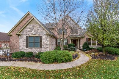 Single Family Home For Sale: 39 Chateau Valley Lane