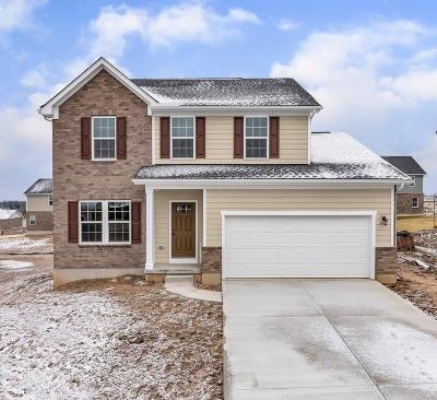 Single Family Home For Sale: 702 Ella Court