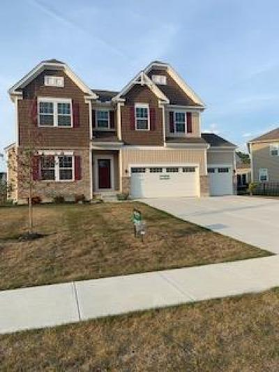 Single Family Home For Sale: 836 Hocking Meadow Circle #5916