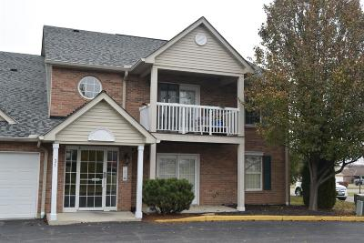 Oxford Condo/Townhouse For Sale: 31 Indian Cove Circle #1