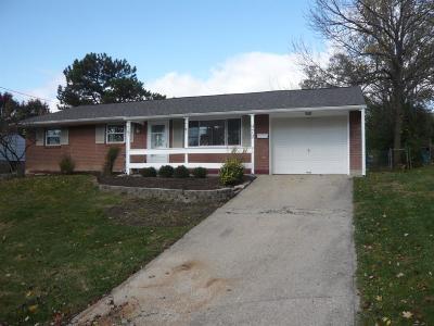 Single Family Home For Sale: 972 Ledro Street