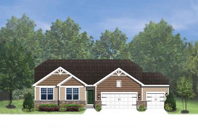 Single Family Home For Sale: 3578 Noahs Run