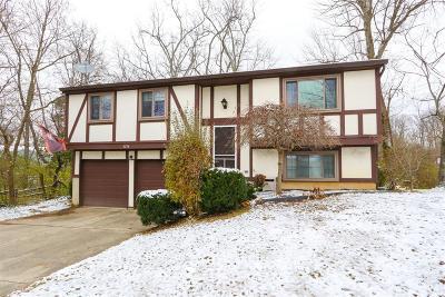 Deerfield Twp. Single Family Home For Sale: 3774 Irwin Simpson Road