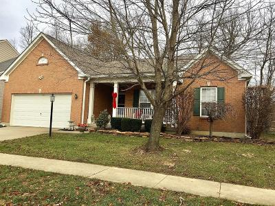 Single Family Home For Sale: 241 Indian Lake Drive