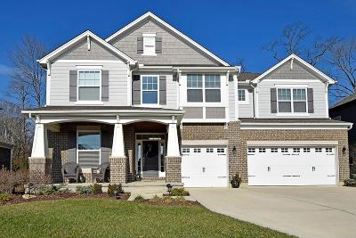 Hamilton Single Family Home For Sale: 1248 Autumn Run Drive