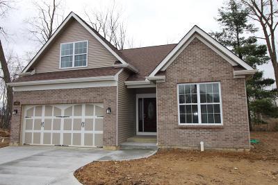 Single Family Home For Sale: 4932 Lebanon Road