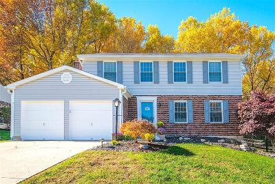 Hamilton County, Butler County, Warren County, Clermont County Single Family Home For Sale: 775 Sundance Drive
