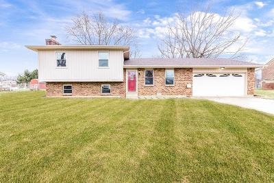 Ross Twp Single Family Home For Sale: 4180 Bruce Drive