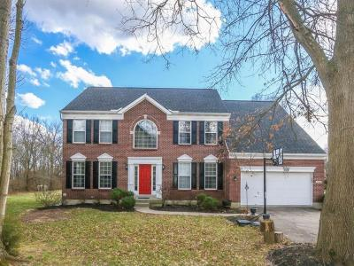 Deerfield Twp. Single Family Home For Sale: 9788 Summers Pond Drive