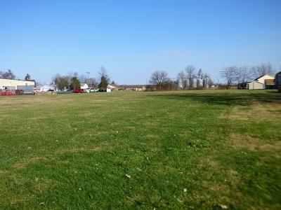Clinton County Residential Lots & Land For Sale: Katy Jane Lane