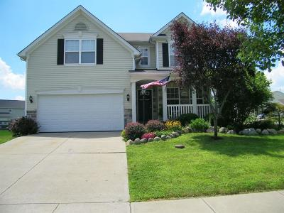 Liberty Twp Single Family Home For Sale: 4907 Glen Springs Drive