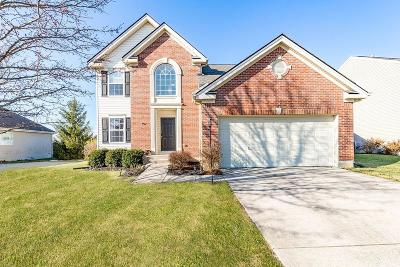 Liberty Twp Single Family Home For Sale: 5612 Sunrise View Circle