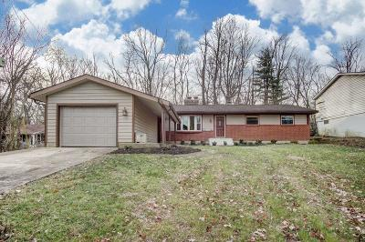 Hamilton County, Butler County, Warren County, Clermont County Single Family Home For Sale: 4006 Riverview Avenue
